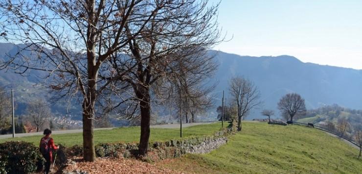 Zogno, gastronomia e cultura sulla Via delle Castagne