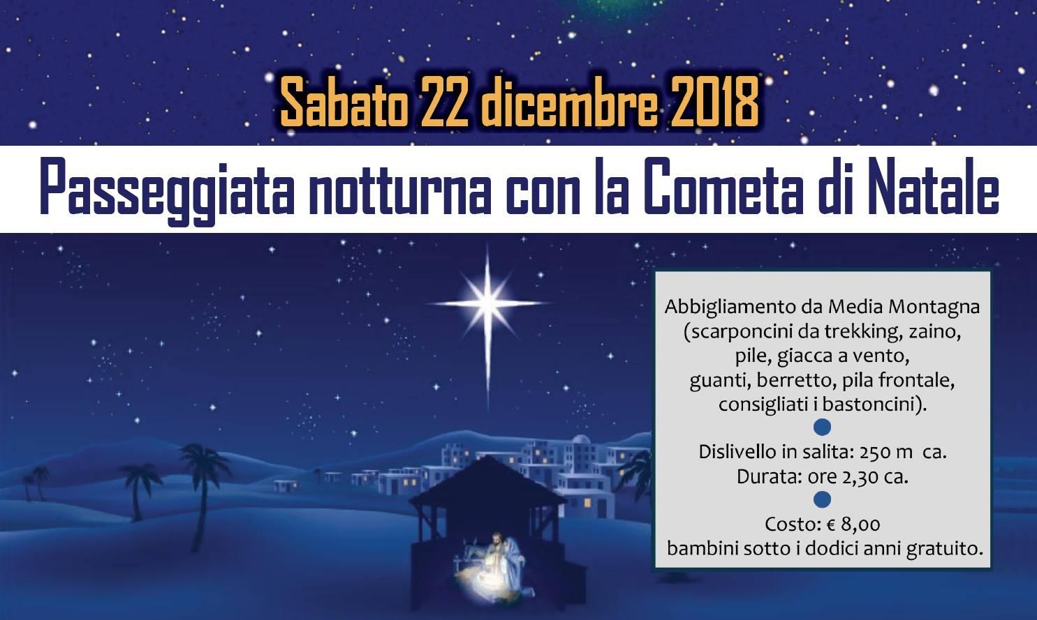 Passeggiata con la cometa di Natale