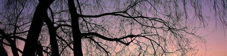 16779_i-colori-del-tramonto-a-pusiano