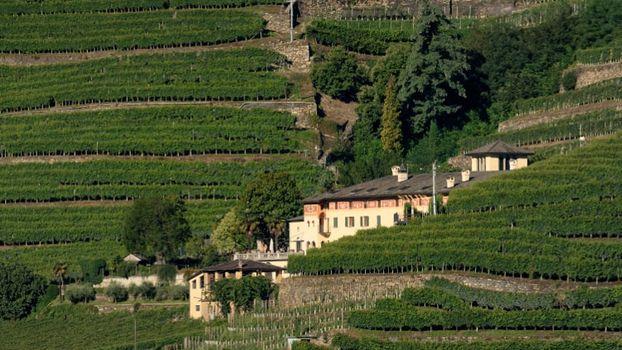 Paesaggi terrazzati in mostra a Tirano