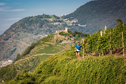 Nel weekend appuntamento con il Valtellina Wine Trail