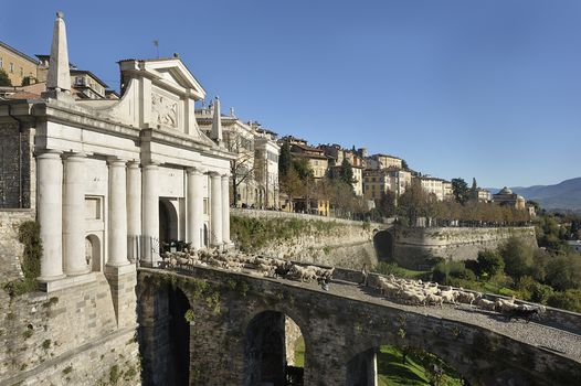 A Bergamo il Festival del Pastoralismo