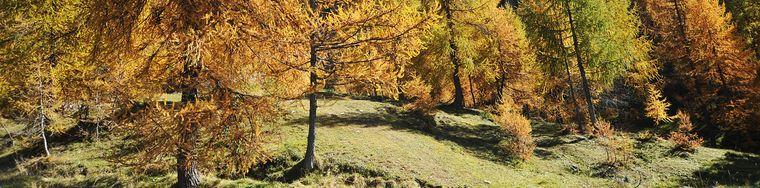9197_colori-autunnali-in-val-carisole