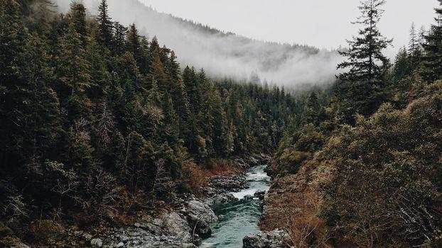 Sulle tracce degli animali selvatici in valle Camonica