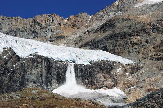 Escursione al ghiacciaio Fellaria