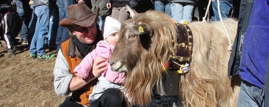 Ardesio, la Fiera delle capre compie 20 anni