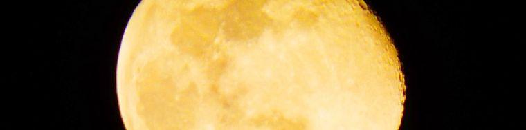32208_p1080186-_-copia-_2_-_-copiajpg.jpg