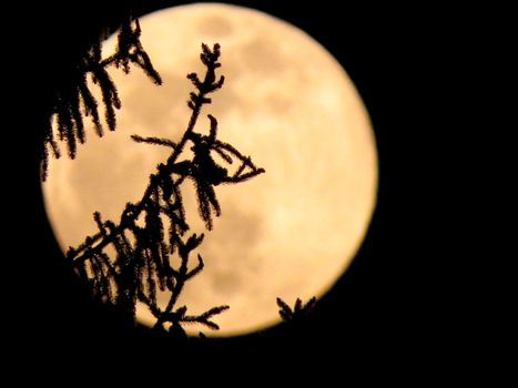 Nel weekend camminate sotto la Super Luna