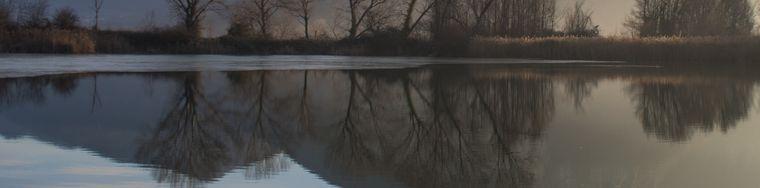 16927_inverno-alle-torbiere-del-sebino