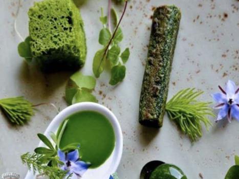 Dai prati alla cucina, una domenica con le erbe