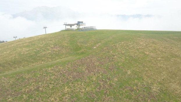 Allarme cinghiali in alta Valle Seriana