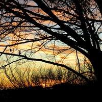 Che dire, guardare la tua gallery ripresa al tramonto e'come viverla..ciao