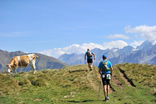 Adamello Ultra Trail, un weekend da leggenda