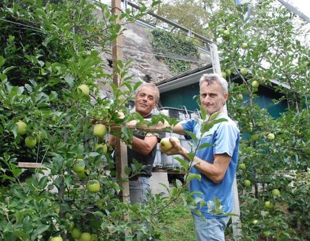 Nuova stagione per i frutticoltori brembani