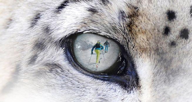 A Spiazzi di Gromo lo Snow Leopard Day 2020