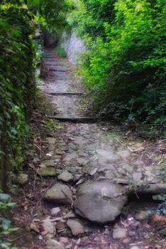 Camminando per i colli di Bergamo
