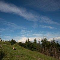 """Esatto! I monti lariani sanno offrire panorami mozzafiato ed angoli che non crederesti mai di trovare... ed il Monte Bolettone non fa eccezione, è un angolo di paradiso a pochi chilometri """"da casa""""..."""