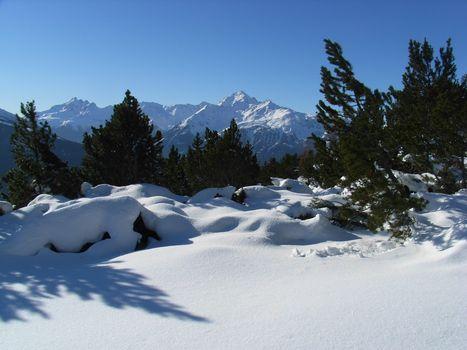 Ciaspole e sci nel Parco nazionale dello Stelvio