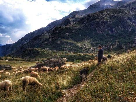 Un video per raccontare il progetto Pasturs